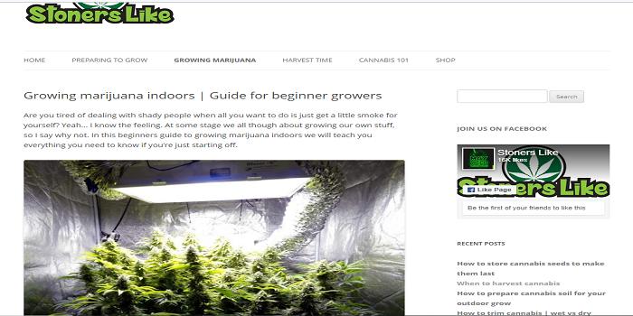 growing marijuana indoors | Guide for beginner growers